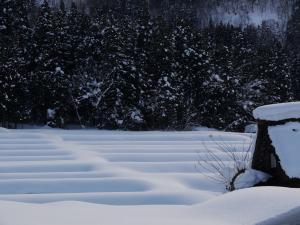 雪積もって土肥える