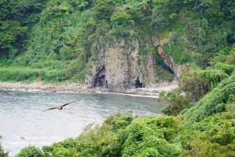 海がある京都