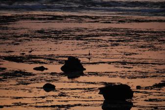 あやまる岬からの夜明け