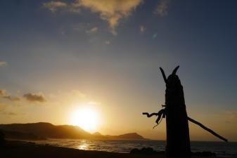 手広海岸の朝日
