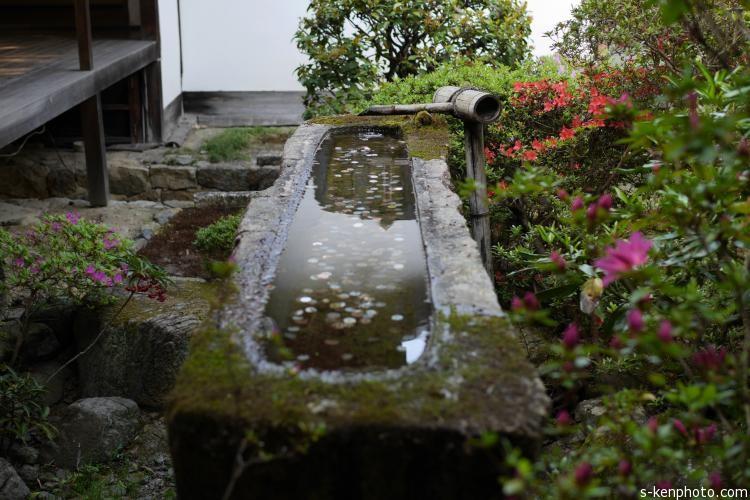 安楽寺の土塀
