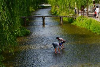 白川で川遊び